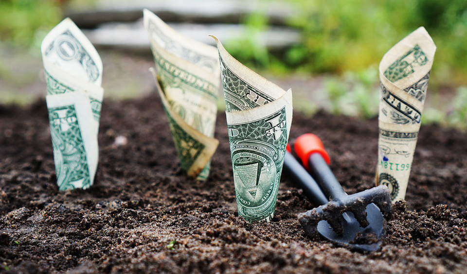 How to start investing in 5 easy steps
