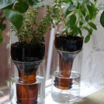 How to Recycle and Reuse Glass Bottles, Jars and Tin Cans