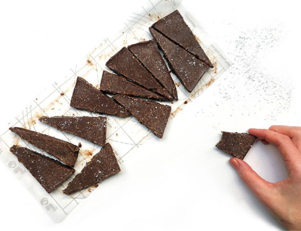 Carob Coconut Tahini Fudge [Raw, Vegan, Gluten Free]
