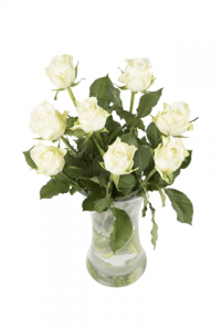 White speciality Roses