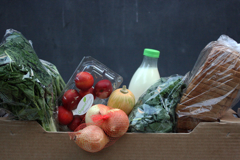 The Best Fresh Produce Delivery Services in Johannesburg - Freshly Grown