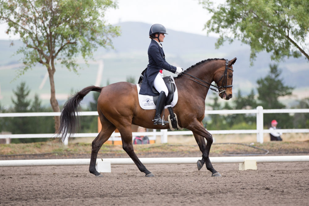 Nichola Mohr on her plans to become the first South African Olympian in Dressage