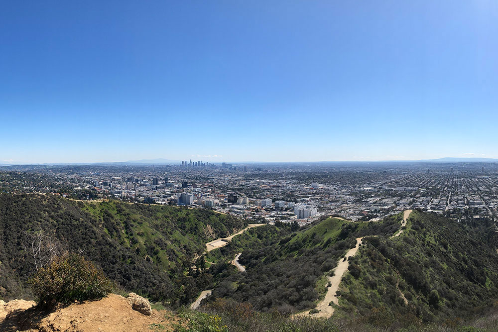 Hiking Los Angeles: Two Trails Not to Miss - Runyon Canyon