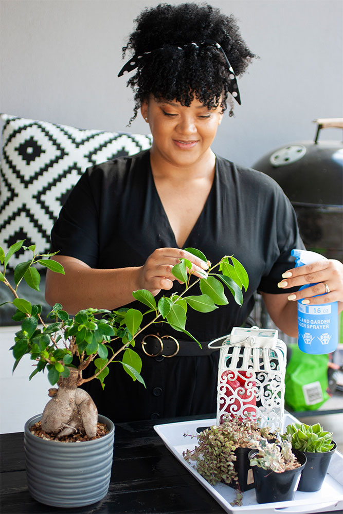 Becoming a Plant Lady with Shavon Leander 2