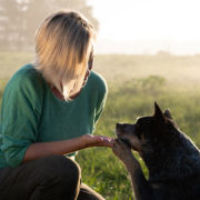 A Dog Trainer is Teaching you Tricks to Train Your Dog at Home