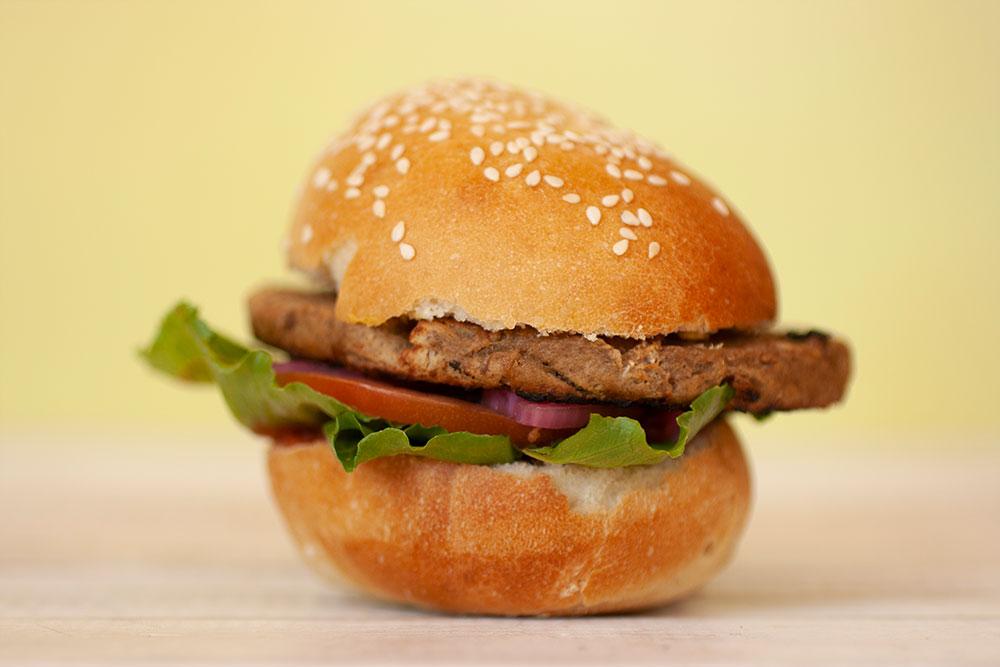 The Best Plant Based Burger A Nutreats Taste Test -Frys Family Burger 2